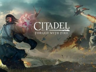 Citadel : Forged With Fire