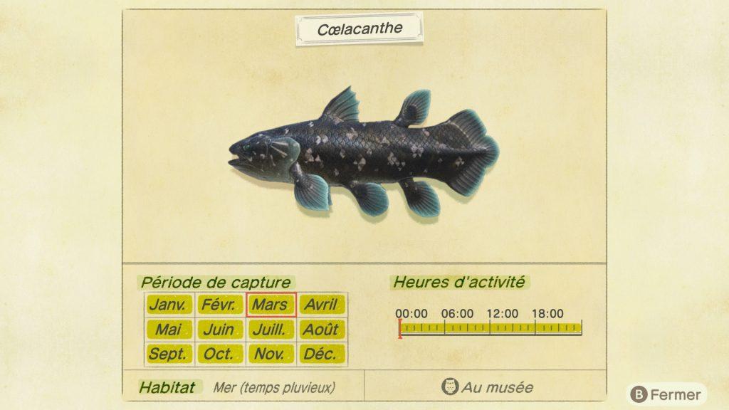 Coelacanthe Animal Crossing