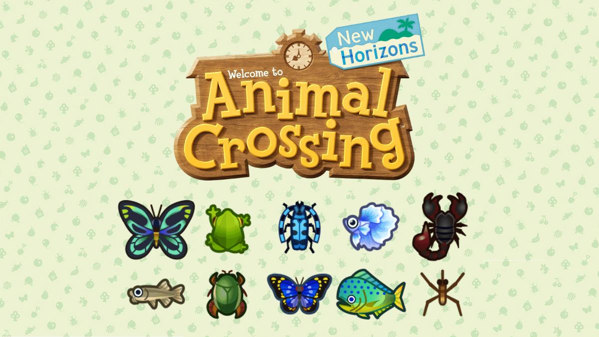 Animal Crossing New Horizon poissons