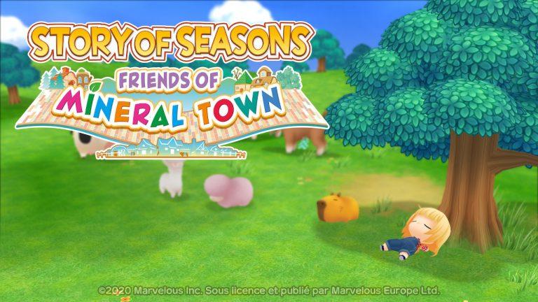STORY OF SEASONS : Friends of Mineral Town – Guide pour récupérer son chien ou autre animal de compagnie.