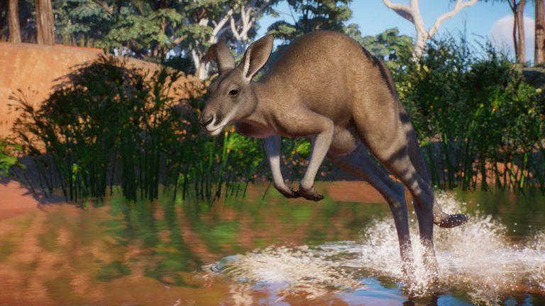 Planet Zoo – Partez aux antipodes cet été avec le DLC Australie